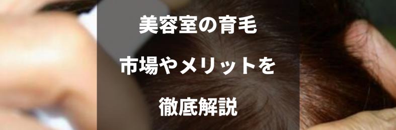 髪質改善のネクストブーム⁉美容室で育毛メニューが注目される理由